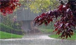 تداوم بارشها در پایتخت