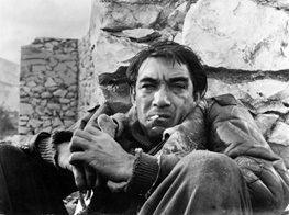 بهترین فیلم اسکار در ایران اکران می شود
