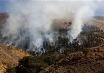 آتشسوزی درختان در بزرگراه مدرس