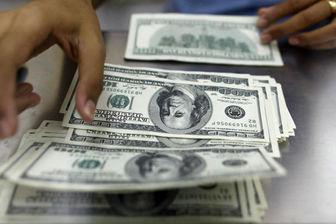 دولت نباید دلار را قیمت گذاری کند