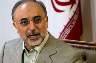 صالحی: سخنان اخیر اوباما درباره ایران مصرف داخلی دارد