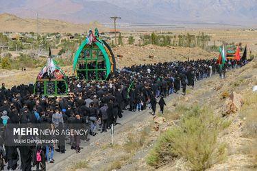 3915156_15.آیین-نخل-برداری-سنتی-در-علی-آباد-یزد