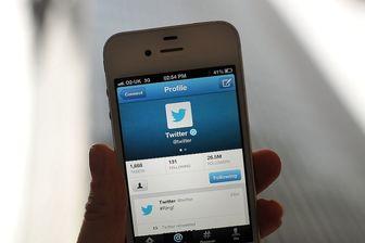 ارعاب منتقدان حکومت آل سعود توسط ارتش توئیتری عربستان