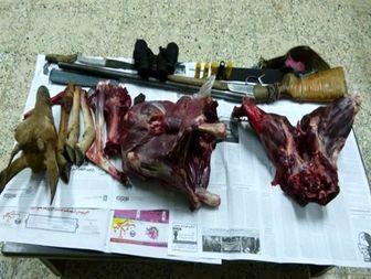 کشف لاشه یک راس میش وحشی و دستگیری 2 شکارچی غیرمجاز درقاین+تصاویر