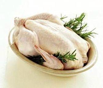کاهش خفیف قیمت مرغ