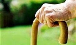8.2 درصد جمعیت کشور سالمند هستند