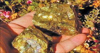ایران به سالی ۸ تن طلا میرسد