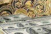 آشفتگی ادامه دار در بازار ارز و سکه/ دولت مقصر گرانی ها است؟