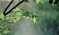 وزش شدید باد و باران در کشور