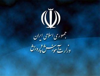 استان قزوین در جشنواره تجارب تربیتی رتبه برتر کشوری را کسب کرد