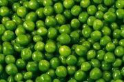قیمت میوههای نوبرانه در میادین ترهبار