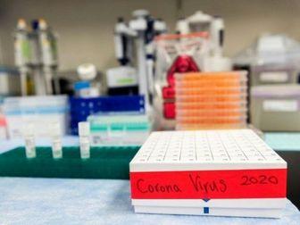 دانشگاه پاکستان مدعی کشف داروی کرونا شد