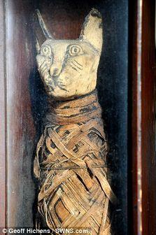 گربه مومیایی شده ۲۰۰۰ ساله در یک خانه / عکس