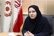 تلاش وزارت رفاه برای کمک به زنان آسیب دیده