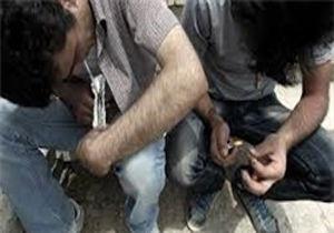 اعتیاد 4.4میلیون نیروی کار در ایران