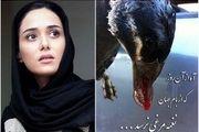 پریناز ایزدیار خواهان تحریم بازار پرندهفروشان فریدونکنار شد
