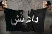 «صدامِ» داعش بازداشت شد