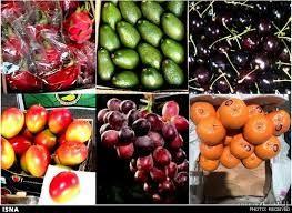 احتمال آلودگی میوه های قاچاق