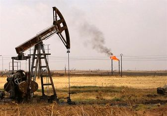 تولید نفت «شراره»عادی شد