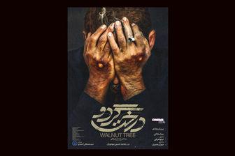 مهران مدیری و پیمان معادی با «درخت گردو» در جشنواره فجر/ فیلم