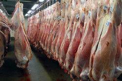 قیمت گوشت افزایش یافت
