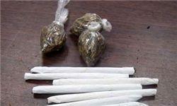 آمار چشمگیر «گل» و «حشیش»؛ بیشترین کشفیات موادمخدر در اطراف مدارس
