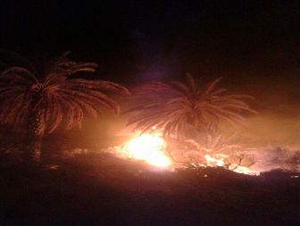 ۱۵هکتار از نخلستانهای جازموریان در آتش سوخت+تصاویر