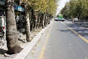 اسراری جالب درباره خیابان ولیعصر تهران +تصاویر