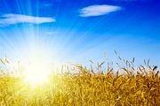 توصیههای طب ایرانی برای فصل گرما