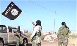 داعش ۷۰ عضو عشیره «الدلیم» را در تکریت ربود