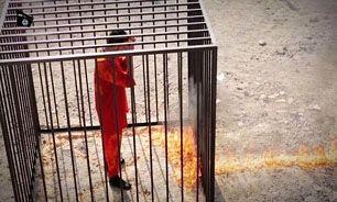 داعش به خلبان اردنی، مخدر تزریق کرده بود