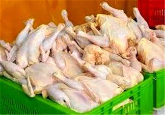 مرغ ۷ هزار تومانی گران نیست