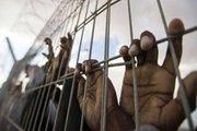 افشای نام زندانهای سری امارات در یمن