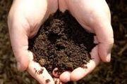 متولیان جلوی قاچاق خاک را بگیرند