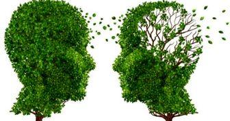 یک آزمون ساده هوش برای تشخیص اولیه آلزایمر