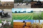 اختلاف آماری ۲۸۰۰ میلیاردی در پرداخت وام اشتغال روستایی