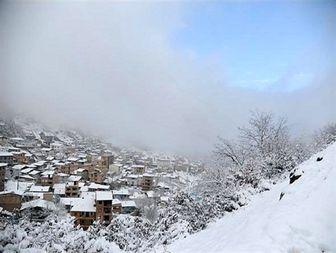 ۷۵ میلیارد ریال خسارت به باغات شهرستان گرمی مغان