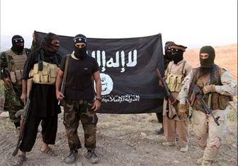 بعثیها نیروهای داعش را سپر بلای خود میکنند