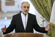 صالحی: ایران به قدرت بلامنازع منطقه مبدل شده است