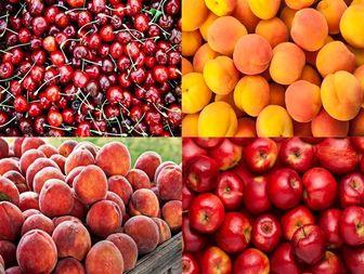 میوههای فاقد رنگآمیزی بخرید ! / رنگ آمیزی میوههای نوبرانه سبب بهبود کیفیت نمیشود