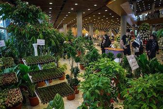 افتتاح چهارمین دوره از نمایشگاه گیاهان دارویی