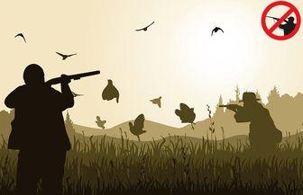 شکار غیرمجاز حیوانات چه مجازاتی دارد؟