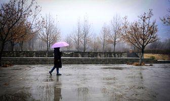 بارش پراکنده باران در برخی استان های کشور