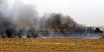 اعتراف صهیونیستها به 35 مورد آتش سوزی در جنوب فلسطین