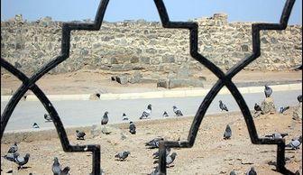 ادعای عجیب مقام عربستانی