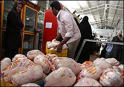 قیمت مرغ در بازار ارزان میشود