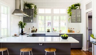10 گیاه مناسب برای آشپزخانه