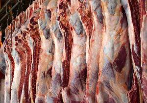 قاچاق دام زنده بر افزایش قیمت گوشت دامن زد