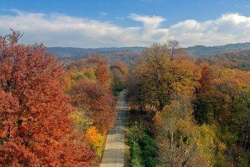 طبیعت زیبای پاییزی ساری/ گزارش تصویریَ