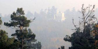 هوای تهران برای گروه های حساس جامعه آلوده است